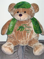 Ebroidered Stitches Teddy Bear